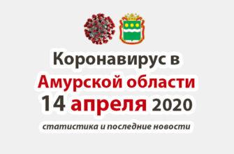 Коронавирус в Амурской области на 14 апреля 2020 года