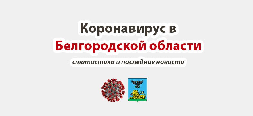 Коронавирус в Белгородской области