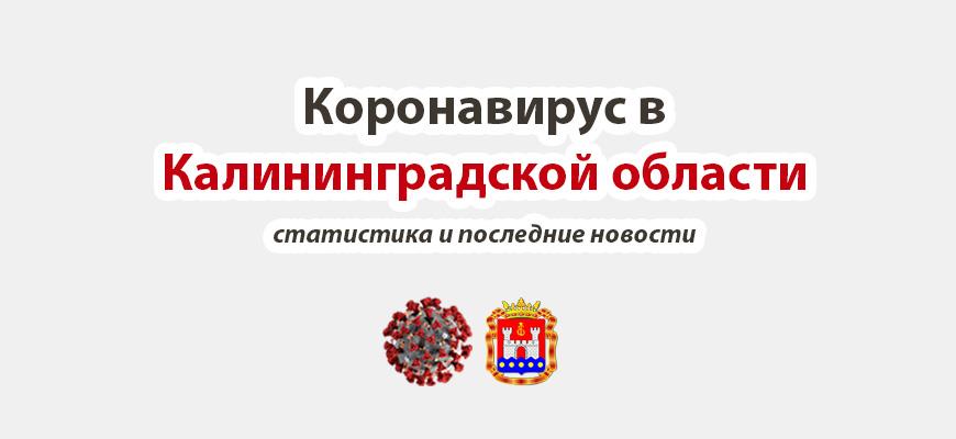 Коронавирус в Калининградской области