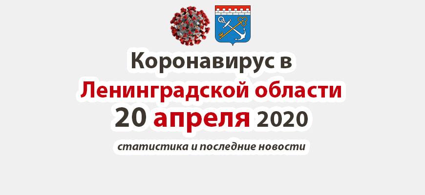 Коронавирус в Ленинградской области 20 апреля 2020