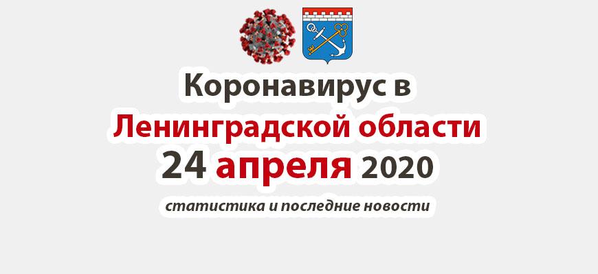 Коронавирус в Ленинградской области 24 апреля 2020