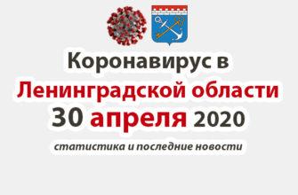 Коронавирус в Ленинградской области 30 апреля 2020