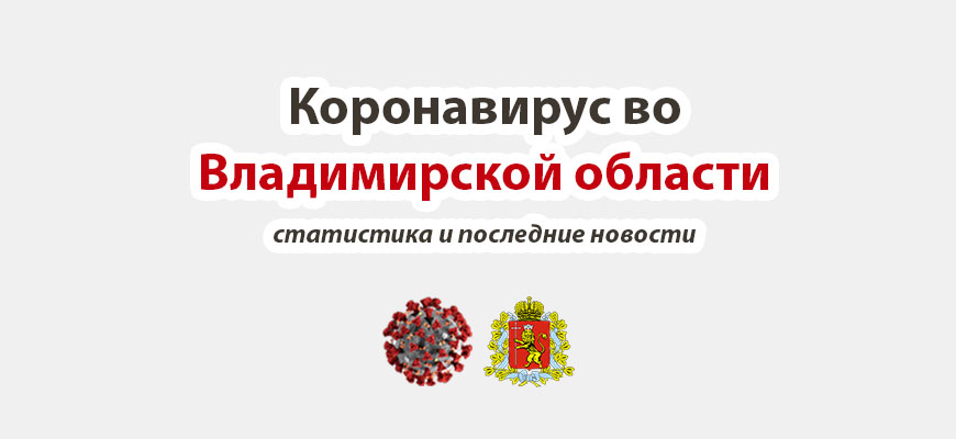 Коронасирус во Владимирской области