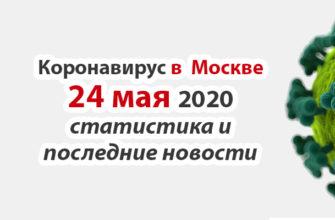 Коронавирус в Москве на 24 мая 2020 года