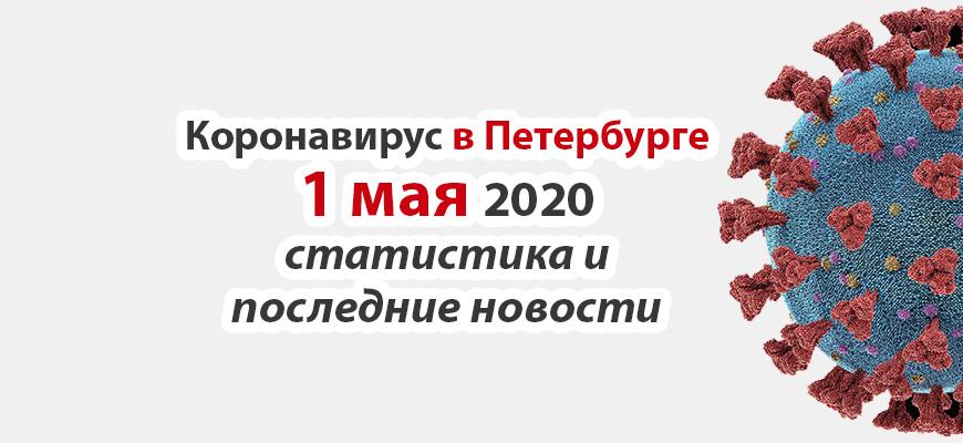 Коронавирус в Петербурге на 1 мая 2020 года