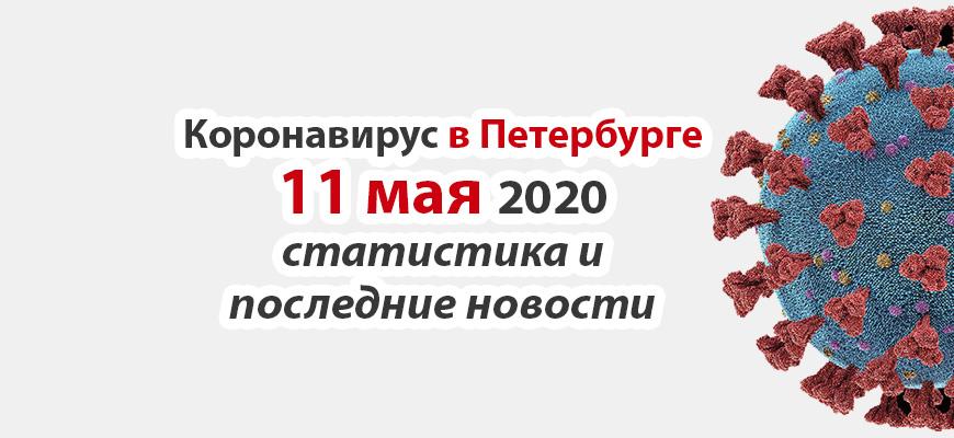 Коронавирус в Петербурге на 11 мая 2020 года