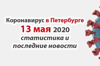 Коронавирус в Петербурге на 134 мая 2020 года