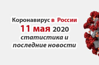 Коронавирус в России на 11 мая 2020 года