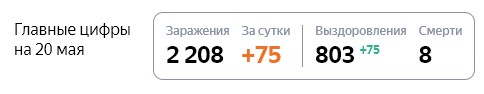 Статистика стопкоронавирус.рф в Ленобласти на 20 мая: сколько заболело, выздоровело, умерло с коронавирусом человек
