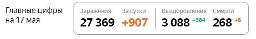 Статистика стопкоронавирус.рф в Подмосковье на 17 мая: сколько заболело, выздоровело, умерло с коронавирусом человек