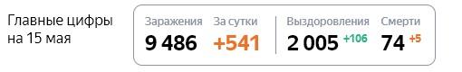 Статистика стопкоронавирус рф по Петербурге на 15 мая
