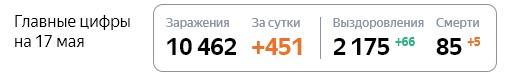 Статистика стопкоронавирус рф по Петербурге на 17 мая