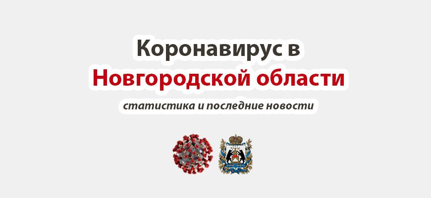 Коронавирус в Новгородской области