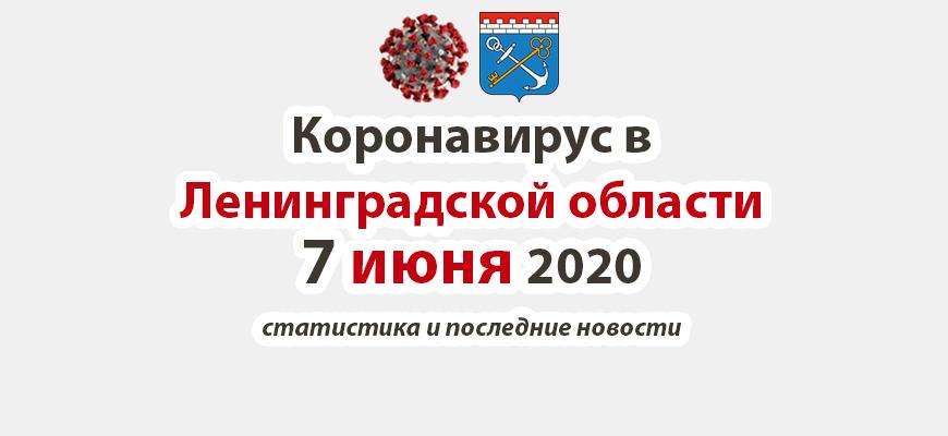 Коронавирус в Ленинградской области 7 июня 2020