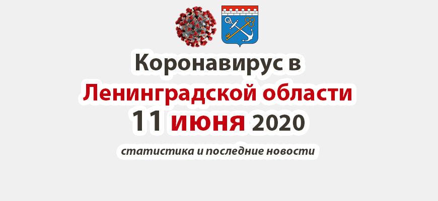 Коронавирус в Ленинградской области 11 июня 2020