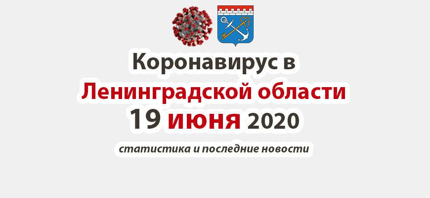 Коронавирус в Ленинградской области 19 июня 2020