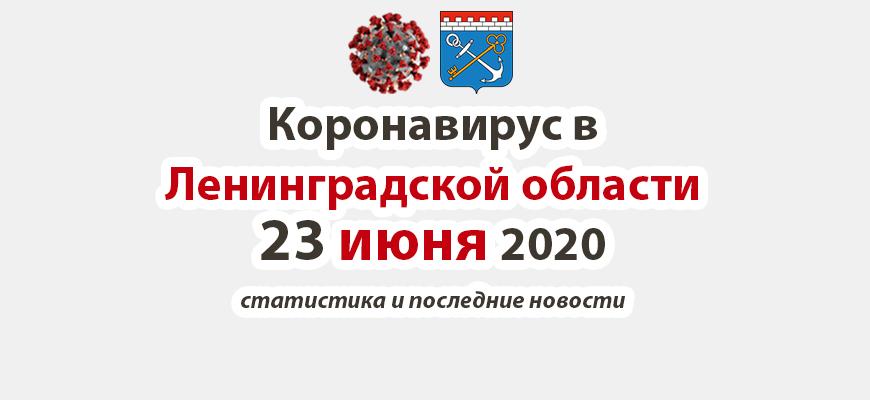 Коронавирус в Ленинградской области 23 июня 2020