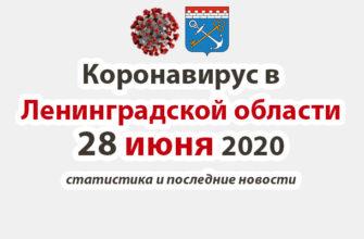 Коронавирус в Ленинградской области 28 июня 2020