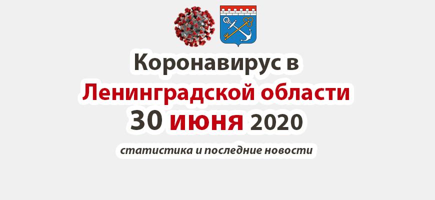 Коронавирус в Ленинградской области 30 июня 2020