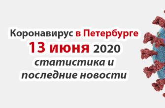 Коронавирус в Санкт-Петербурге на 13 июня 2020 года