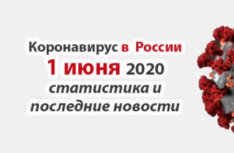 Коронавирус в России на 1 июня 2020 года