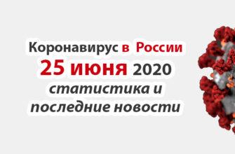 Коронавирус в России на 25 июня 2020 года