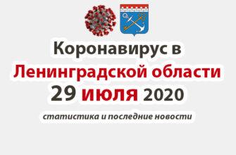 Коронавирус в Ленинградской области 29 июля 2020