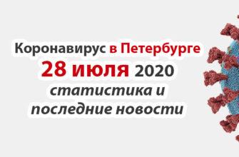 Коронавирус в Санкт-Петербурге на 28 июля 2020 года