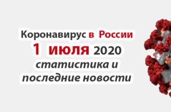 Коронавирус в России на 1 июля 2020 года