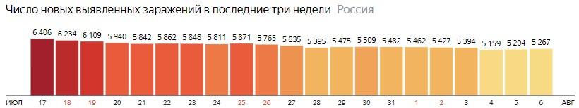 Число новых зараженных коронавирусом  по дням в России на 6 августа 2020 года