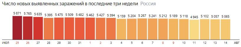 Число новых зараженных коронавирусом  по дням в России на 14 августа 2020 года