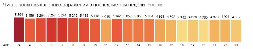 Число новых зараженных коронавирусом  по дням в России на 24 августа 2020 года