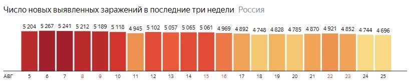 Число новых зараженных коронавирусом  по дням в России на 25 августа 2020 года