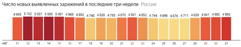 Число новых зараженных коронавирусом  по дням в России на 31 августа 2020 года