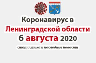 Коронавирус в Ленинградской области 6 августа 2020