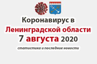 Коронавирус в Ленинградской области 7 августа 2020