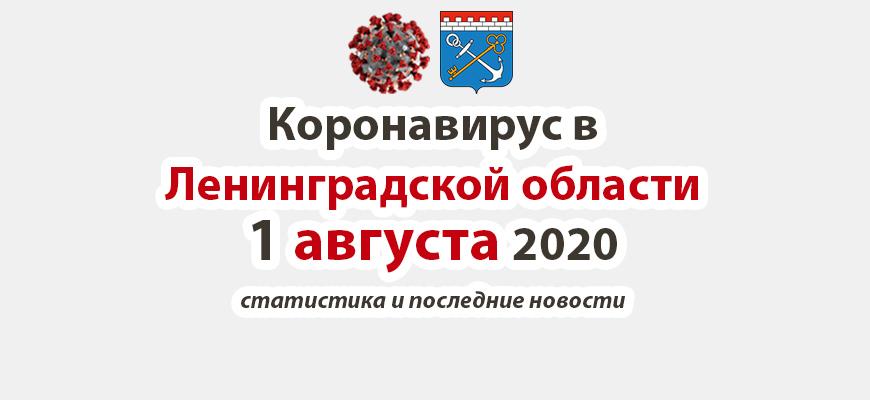Коронавирус в Ленинградской области 1 августа 2020