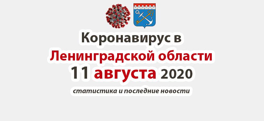 Коронавирус в Ленинградской области 11 августа 2020