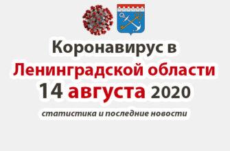 Коронавирус в Ленинградской области 14 августа 2020