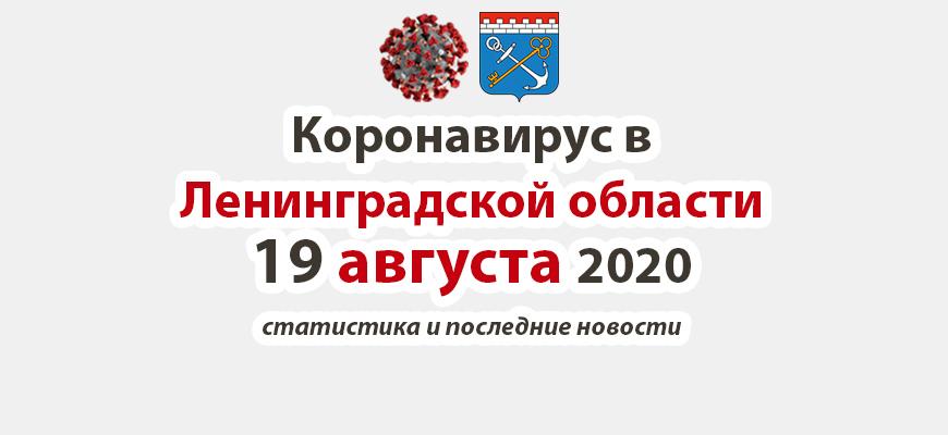 Коронавирус в Ленинградской области 19 августа 2020