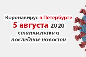 Коронавирус в Санкт-Петербурге на 5 августа 2020 года