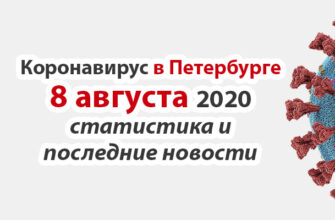 Коронавирус в Санкт-Петербурге на 8 августа 2020 года