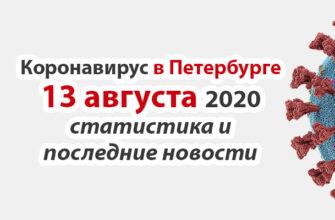 Коронавирус в Санкт-Петербурге на 13 августа 2020 года