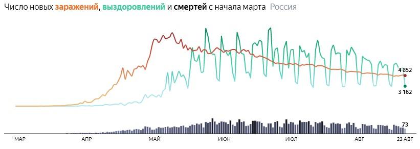 Ситуация с COVID-19 в России по дням статистика в динамике на 24 августа 2020 года