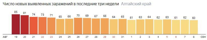 Число новых зараженных КОВИД-19 по дням в Алтайском крае на 8 сентября 2020 года