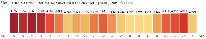 Число новых зараженных коронавирусом  по дням в России на 1 сентября 2020 года