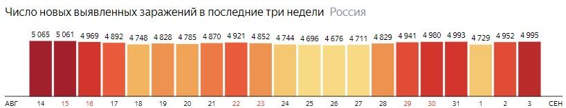 Число новых зараженных коронавирусом  по дням в России на 3 сентября 2020 года