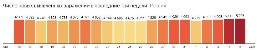 Число новых зараженных коронавирусом  по дням в России на 5 сентября 2020 года