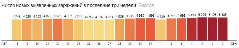 Число новых зараженных коронавирусом  по дням в России на 7 сентября 2020 года
