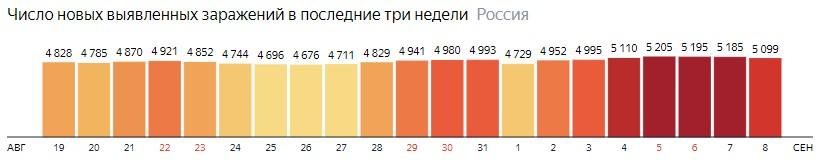 Число новых зараженных коронавирусом  по дням в России на 8 сентября 2020 года